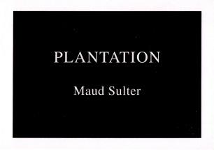 Maud Sulter, Plantation (1995) detail